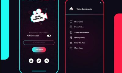 How To Download Videos From Tik Tok For Free